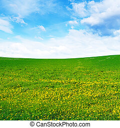 mező, eredet