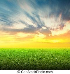 mező fű, ég, zöld