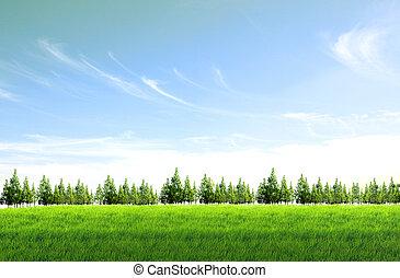 mező, háttér, ég blue, zöld