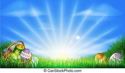 mező, ikra, húsvét, háttér