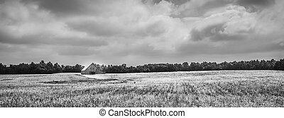 mező, szójabab, istálló