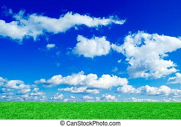 mező, zöld