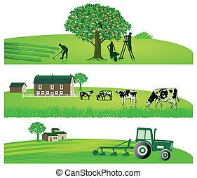 mezőgazdaság, kert