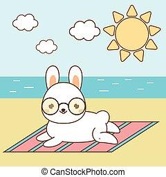 mezei nyúl, üregi nyúl, sunbathing., csinos, tengerpart., fehér, tengerpart, kawaii, fekvő, nyuszi