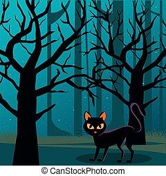 mindenszentek napjának előestéje, hold, színhely, éjszaka, macska, erdő, fekete, tele