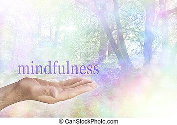 mindfulness, természet