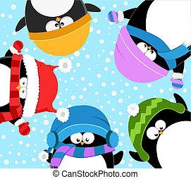 misét celebráló, pingvin, tél
