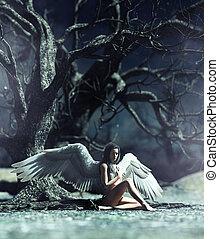 misztikus, erdő, angyal