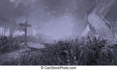 misztikus, ijedős, erdő