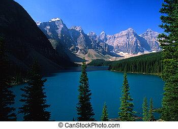 morraine tó, liget, nemzeti, banff