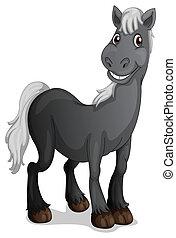 mosolygós, black ló