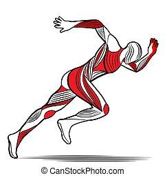 mozgalom, ábra, stilizált, futás, divatba jövő, ember