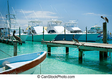 mujeres, mexikó, sziget, cancun, jetty., isla