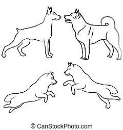 négy, állhatatos, kutya, vázlat