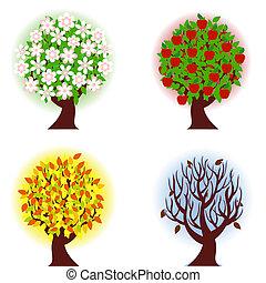 négy, alma, fűszerezni, fa.