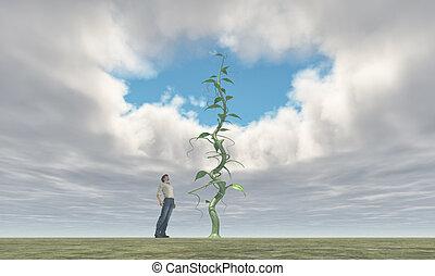 növényi, nagy, farmer, sikeres, övé