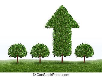 növekedés, anyagi siker