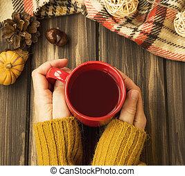 nő, csésze, tető, csokoládé, ősz, csípős, beállítás, hatalom kezezés, lakályos, kilátás
