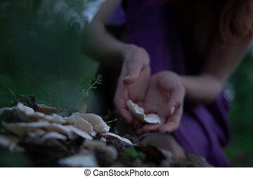 nő, csikk, gombák, erdő, kézbesít, titokzatos, fehér, félhomály
