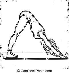 nő, jóga, vector., pose., elszigetelt, póz, kutya, körvonal, vektor, háttér, mukha, lefelé, adho, fehér, svanasana