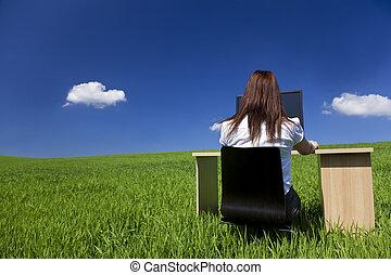 nő, munka hivatal, mező, számítógép, zöld asztal