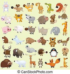 nagy, állhatatos, karikatúra, állat