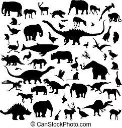 nagy, körvonal, állhatatos, állatok