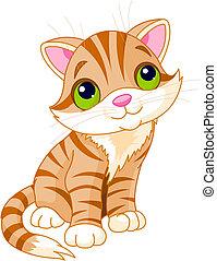 nagyon, csinos, cica