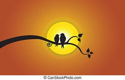 nap, este, ég, szeret madár, narancs