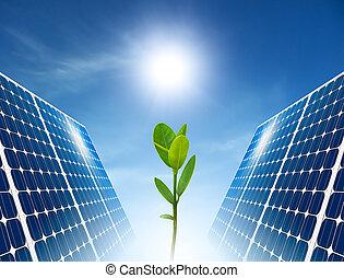 nap-, fogalom, zöld, energy., panel.