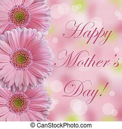 nap, százszorszép, abstarct, anya, rózsaszínű