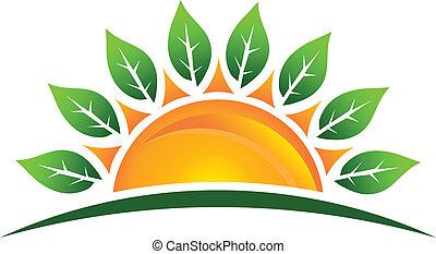 nap, zöld, kép, jel