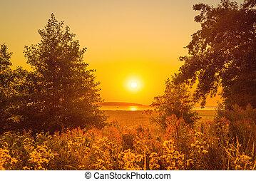 napkelte, felett, tó, bitófák