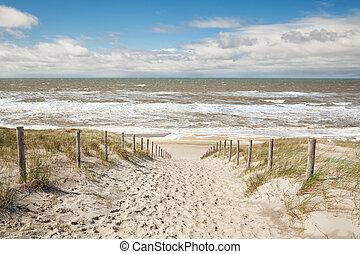 napos, homok tenger, út, tengerpart, nap