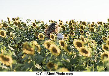 napraforgó, nyár, nő, day., gyönyörű, mező, fiatal