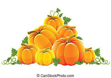 narancs, betakarít, hegy, érett, sütőtök