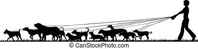 nemezelőmunkás, kutya, női