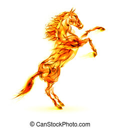 nevelés, elbocsát, ló, feláll.