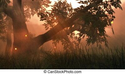 nyár, (1141), kaszáló, képzelet, varázslatos, állati tüdő, erdő, tündér, fireflies