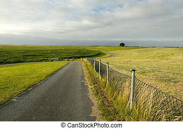 nyár, farmland, holland