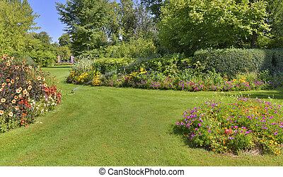 nyár, gyönyörű, kert, parkosít