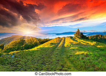 nyár, hegy., napkelte, színes
