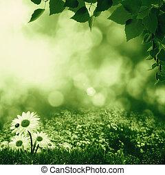 nyár, kaszáló, természetes, smokey, elvont, nap, táj