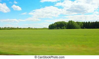 nyár, mentén, zöld, vezetés, mező