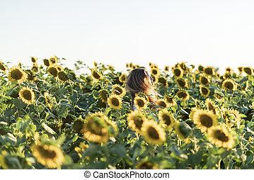 nyár, mező, fiatal, day., gyönyörű woman, napraforgó