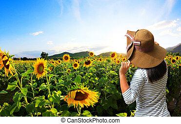 nyár, nő, fiatal, mező