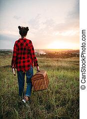 nyár, nő, piknik, mező, kosár, meglehetősen