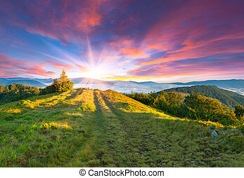 nyár, napnyugta, hegy., színes