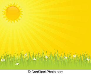 nyár, napos nap