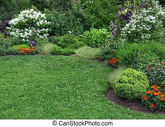 nyár, pázsit, zöld, kert